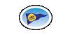 Amatör Denizcilik Federasyonu
